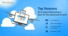 Diceinfocom - Best Digital Marketing Company